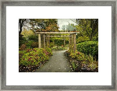 Fall In The Garden At Deer Lake Framed Print by Maria Janicki