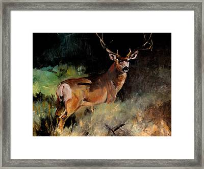 Deer Painting Framed Print by Michele Carter
