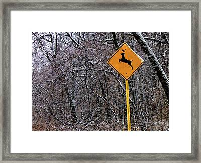 Deer Running In The Forest Framed Print by Robert Frank Gabriel