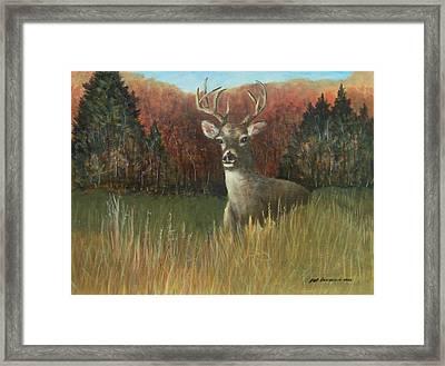 Deer Season Framed Print by Robert Harrington