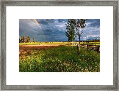Framed Print featuring the photograph Deer Under The Rainbow by Cat Connor