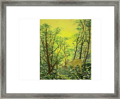 Deer With Fawn Framed Print by Hal Newhouser