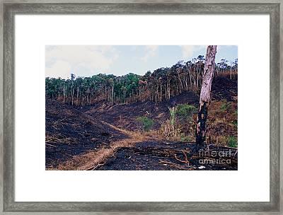 Deforestation In Madagascar Framed Print