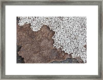 Degrading Asbestos Shingle Framed Print