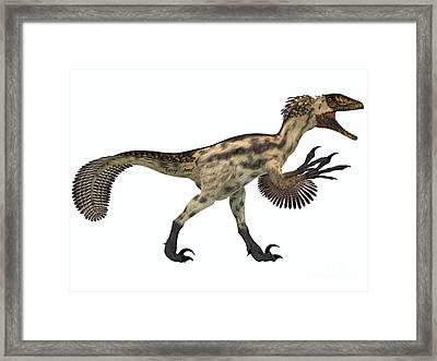 Deinonychus On White Framed Print