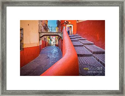 Del Campanero Framed Print by Inge Johnsson