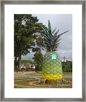 Del Monte - Camp Phillips Framed Print by Mike Holloway