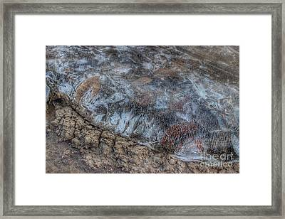 Delaware River Ice With Leaves Framed Print