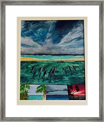 Delfin Framed Print