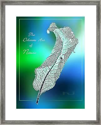 Delicate  Art Framed Print
