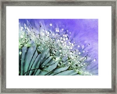 Delicate Dandelions Framed Print by Georgiana Romanovna