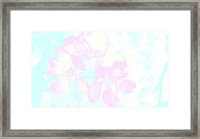 Delicate Flowers Framed Print by Nat Air Craft