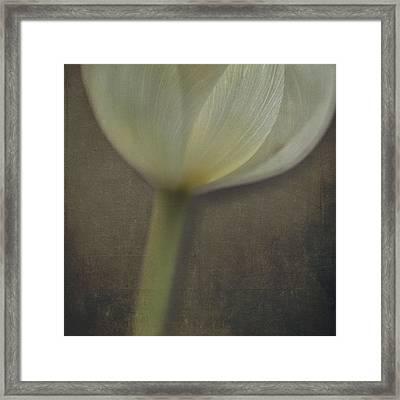 Delicate Goblet Framed Print