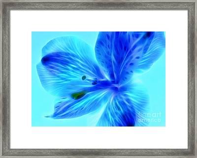 Delicate Nature Framed Print by Krissy Katsimbras