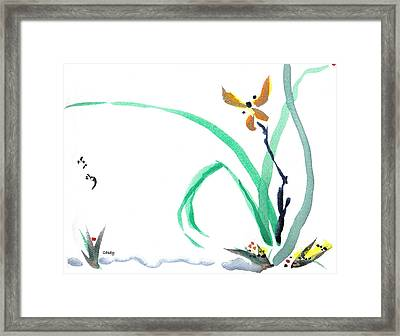 Delicate Orchid Framed Print