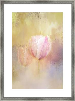 Delicate Pink Spring Framed Print