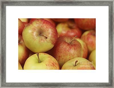 Delicious Apple Fruit Background Framed Print