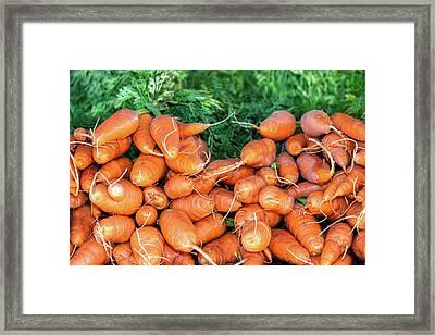 Delicious Carrots Framed Print by Todd Klassy