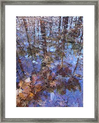 Delight In A Woodland Run-off Framed Print