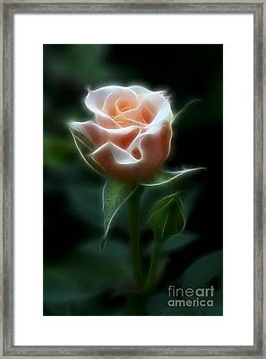 Delight In Beauty Framed Print by Deborah Benoit