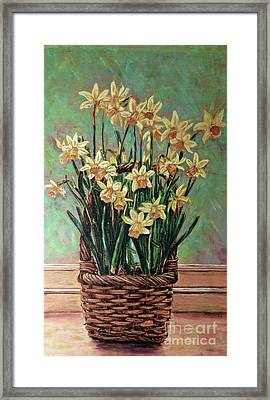 Delightful Daffodils  Framed Print by Cat Culpepper
