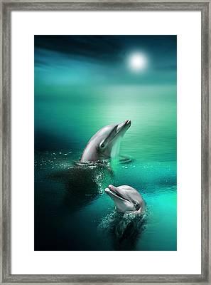 Delightful Dolphins Framed Print by Julie L Hoddinott