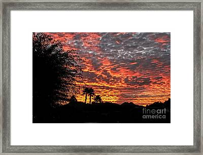 Framed Print featuring the photograph Delightful Evening by Robert Bales