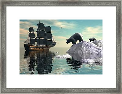 Delinquent Cub Framed Print by Claude McCoy