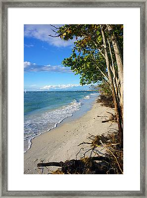 Delnor Wiggins Pass State Park Framed Print by Robb Stan