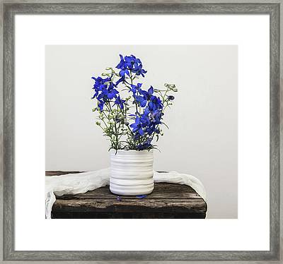 Framed Print featuring the photograph Delphinium Blue by Kim Hojnacki