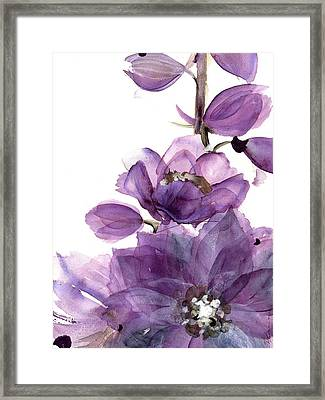Delphinium Framed Print by Dawn Derman