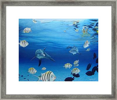 Delphinus Framed Print by Angel Ortiz