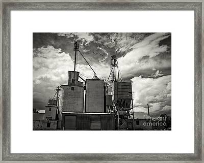 Delta Colorado Grain Elevator Framed Print by Janice Rae Pariza