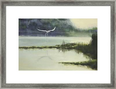 Delta Mist Framed Print