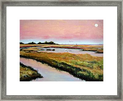 Delta Sunrise Framed Print by Suzanne McKee