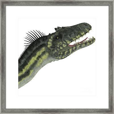 Deltadromeus Dinosaur Head Framed Print