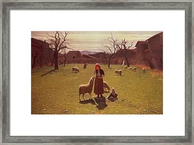 Deluded Hopes Framed Print by Giuseppe Pellizza da Volpedo