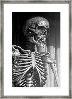 Dem Bones Dem Bones Framed Print by Jez C Self