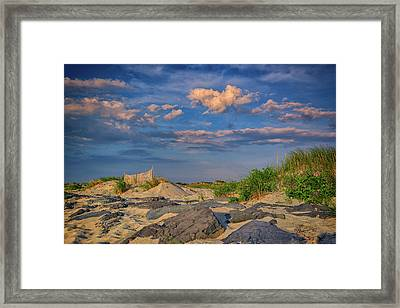 Democrat Point Framed Print
