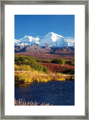 Denali Autumn Framed Print by Ed Boudreau