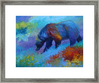 Denali Grizzly Bear Framed Print by Marion Rose