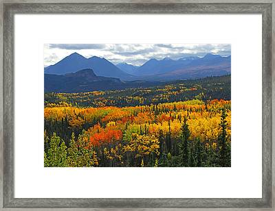 Denali National Park Greeting Framed Print