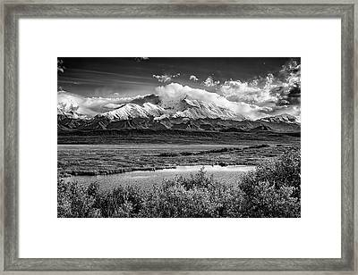 Denali, The High One In Black And White Framed Print by Rick Berk