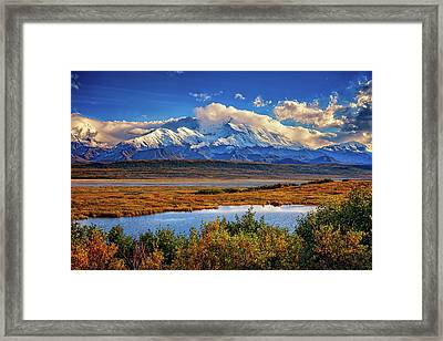 Denali, The High One Framed Print by Rick Berk