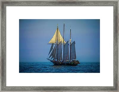 Denis Sullivan - Three Masted Schooner Framed Print