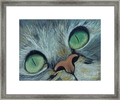 Denise's Cat Jasmine Framed Print