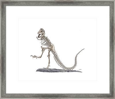 Denvers Dancing T Rex Framed Print