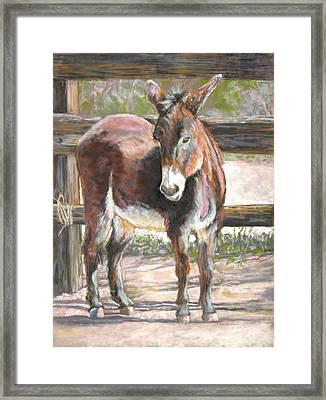 Deo Doro Framed Print by Carole Haslock