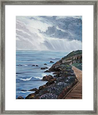 Departing Storm Framed Print by Laura Iverson