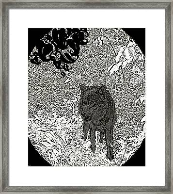Depth Of The Forest Framed Print by Debra     Vatalaro